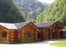 Curatare lemn innegrit cabana bustean rotund